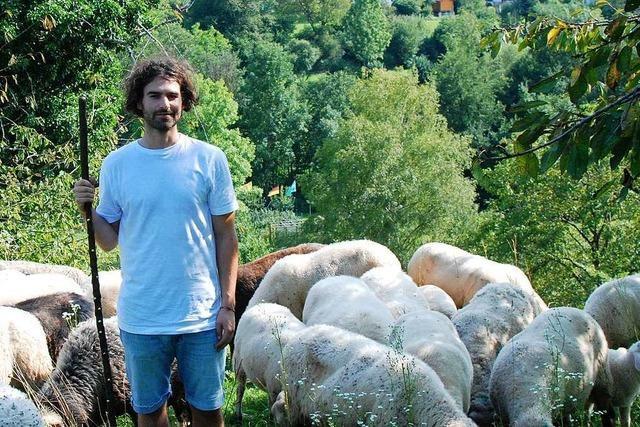 Selbstversuch: Wie idyllisch ist das Leben eines Schafhirten?
