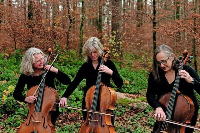 Acht Konzerte an ungwöhnlichen Orten bei den Weiler Klangräumen