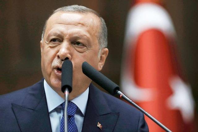Präsidialamt: Erdogan will nun doch US-Vizepräsident Pence in Ankara treffen