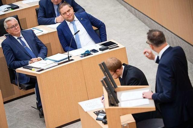 Schuldzuweisungen an AfD im Landtag nach rechtem Terror in Halle