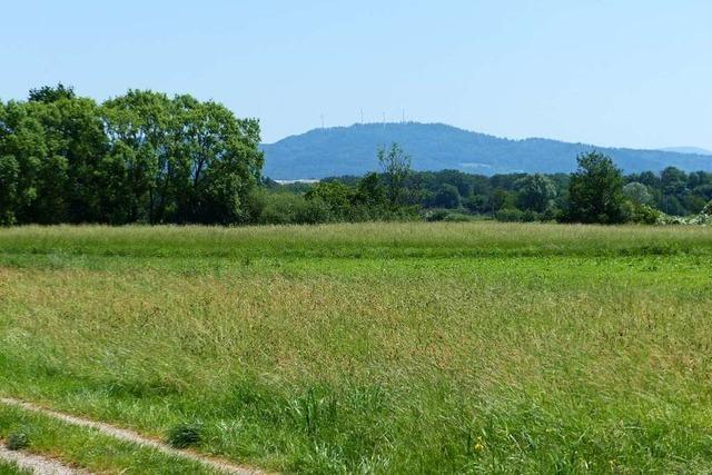 March will bei Holzhausen neues Gewerbe nach altem Plan ansiedeln