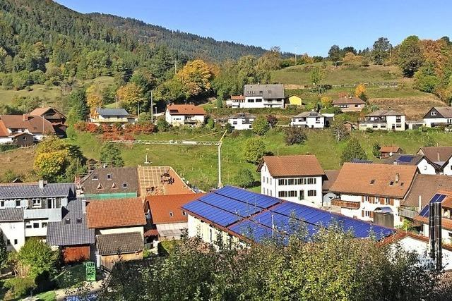 Mit Sonne und Holz zur Energiewende