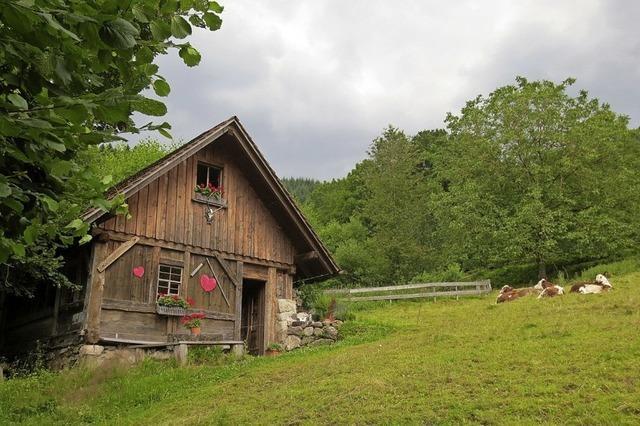 Durch Haslachsimonswald