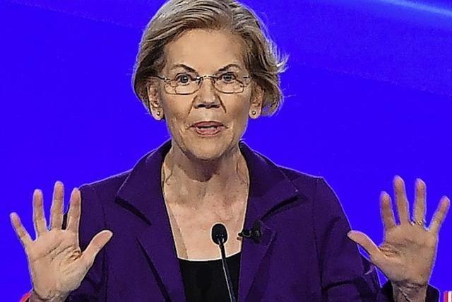 Alle gegen Elizabeth Warren