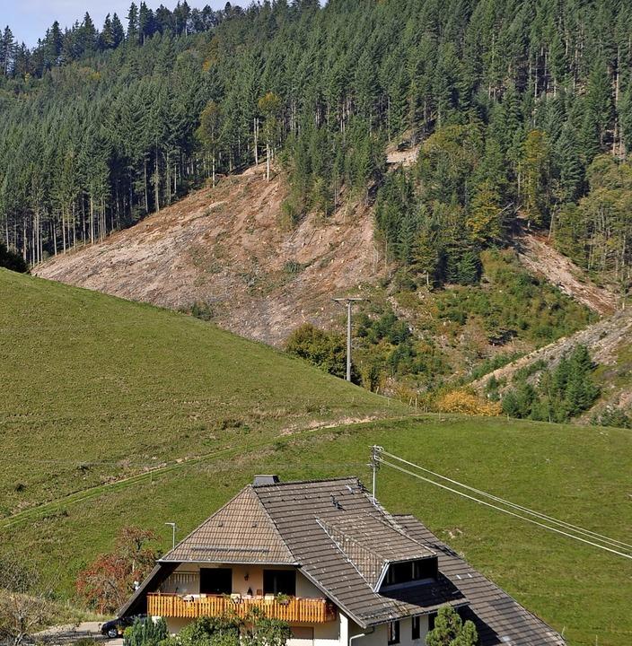 Die große kahle Fläche im Ortsteil Mün...Schäden durch den Borkenkäfer zurück.   | Foto: Rainer Ruther