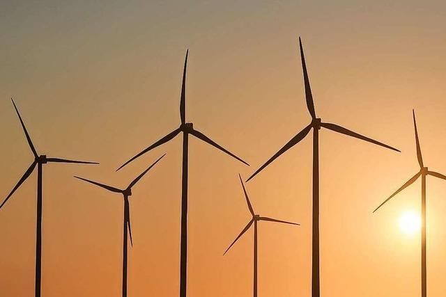 So war der Diskussionsabend zur Energiewende im Kleinen Wiesental