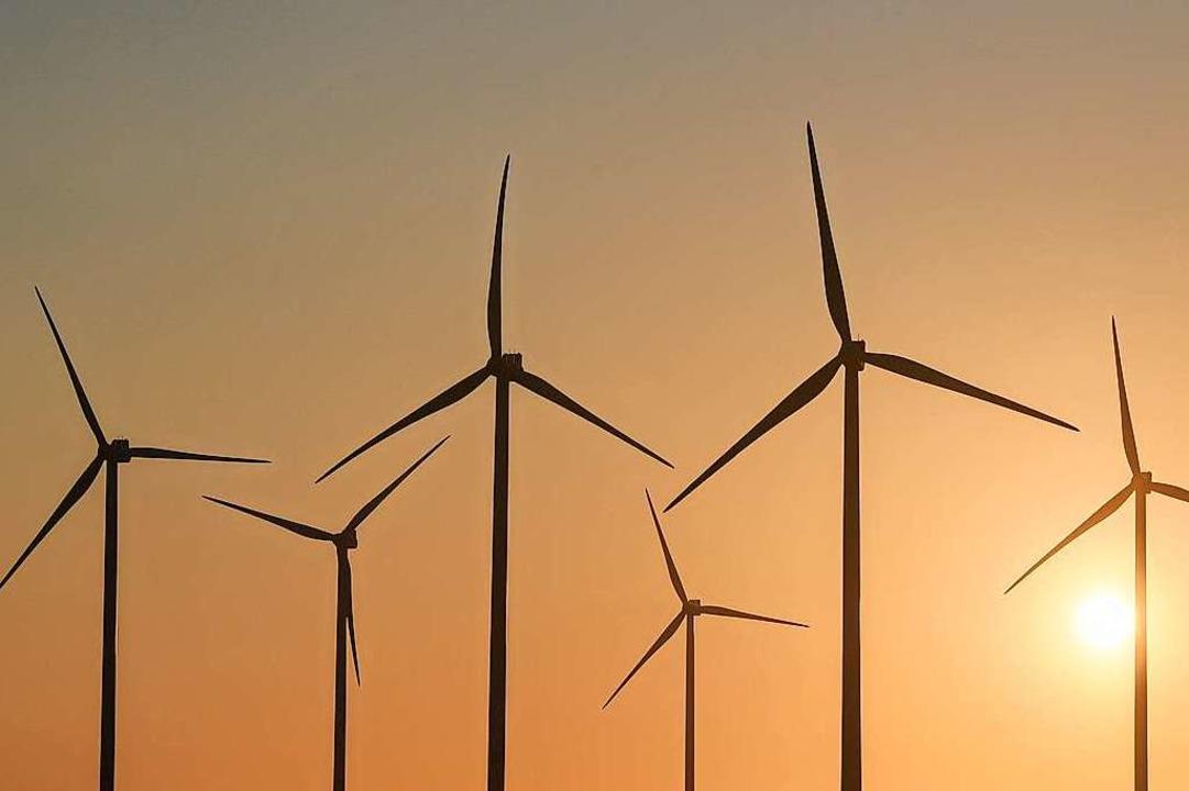 Die Debatte über die geplanten Windräd...ler Blauen sollte versachlicht werden.    Foto: Patrick Pleul (dpa)