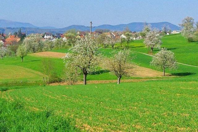 Streuobstwiesen im Kreis Lörrach wären auch für Touristen interessant