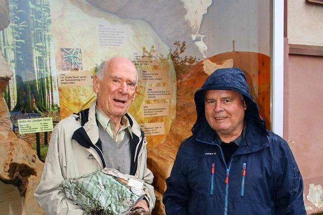 In Gersbach ist ein Stück der einstmals größten Tanne Westeuropas zu sehen