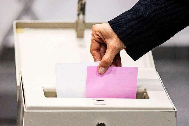 Parlamentswahlen in der Schweiz: Gewinne für die Grünen erwartet