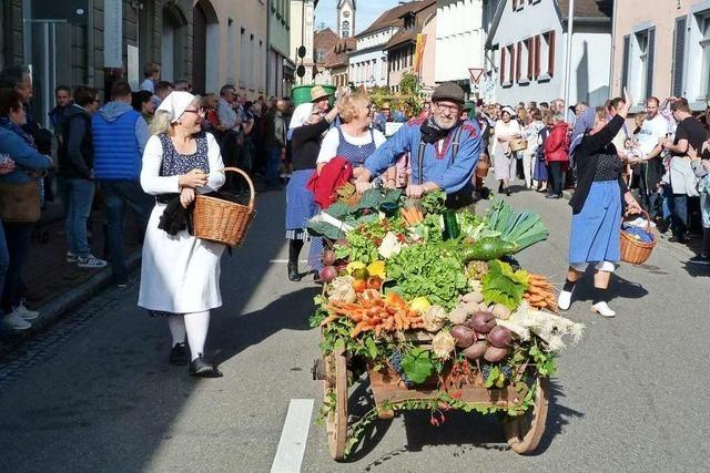 Viele hübsch geschmückte Erntewagen beim Herbstausklang in Ihringen
