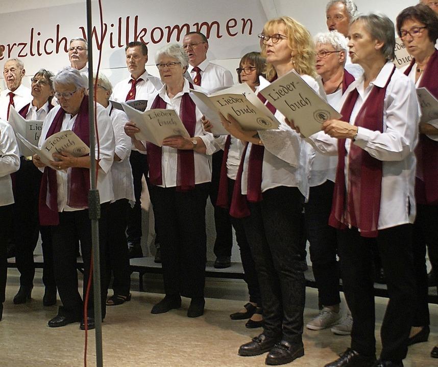 Der gemischte Chor des Gesangvereins E...hor beim Jahreskonzert des MGV Hänner.  | Foto: Werner Probst