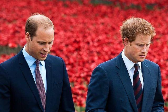 Prinz Harry über Spannungen mit seinem Bruder
