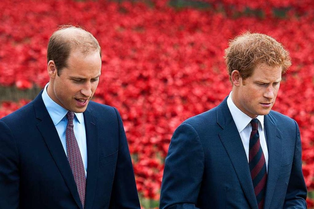 Prinz William und Prinz Harry  | Foto: Will Oliver (dpa)