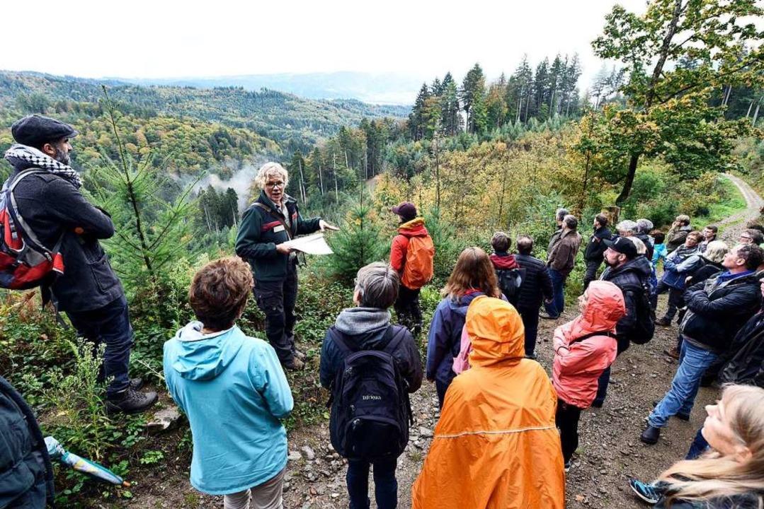 Ortstermin mit Ausblick: Forstamtsleit... der Klimawandel den Wald beeinflusst.  | Foto: Thomas Kunz