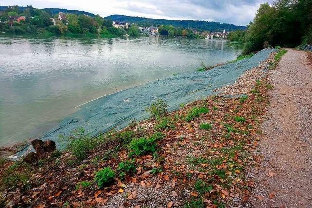 Alle Arbeiten zum Rheinfelder Steg sind gestoppt