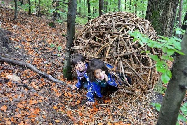 Die BZ hat den neu gestalteten Waldlehrpfad getestet