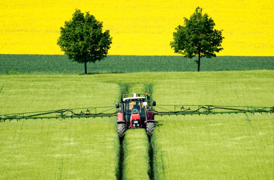 Tragen die Bauern im Südwesten die Pläne der Landesregierung mit?  | Foto: Julian Stratenschulte (dpa)