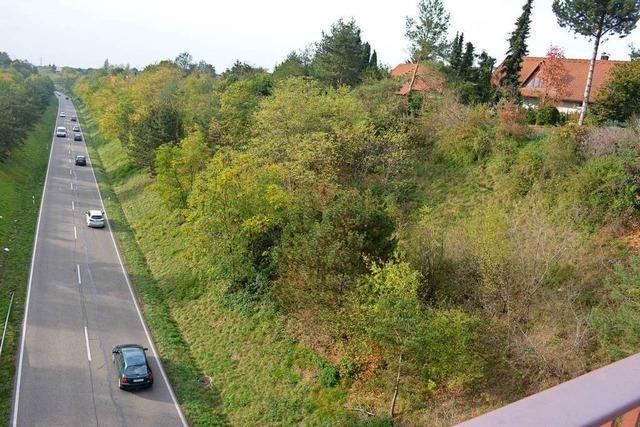 Viel Lärm um die Zollfreie Straße in Weil am Rhein