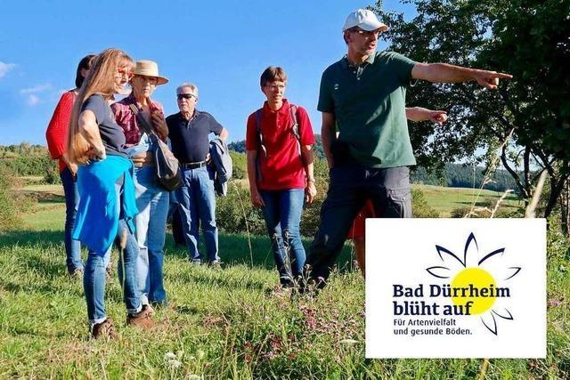 Blühwiesen für Bad Dürrheim - damit es wieder summt und brummt