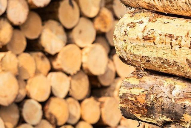 Freiburger Gemeinderat beschließt Zuschüsse für Wohnhäuser aus Holz
