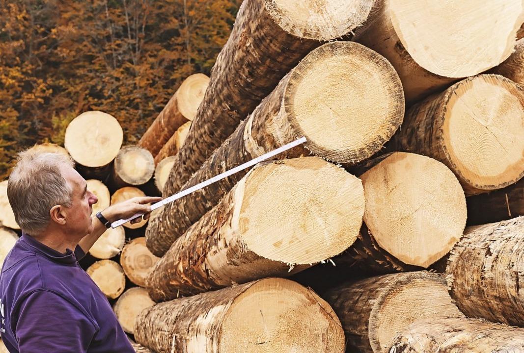 Sägewerksbesitzer Josef-Hermann Braun ...rufen werden,  in einem Fichtenstamm.   | Foto: Wilfried Dieckmann