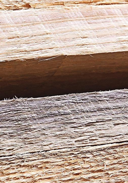 Optische Unterschiede gibt es natürlich zwischen frischem und Käferholz.  | Foto: Wilfried Dieckmann