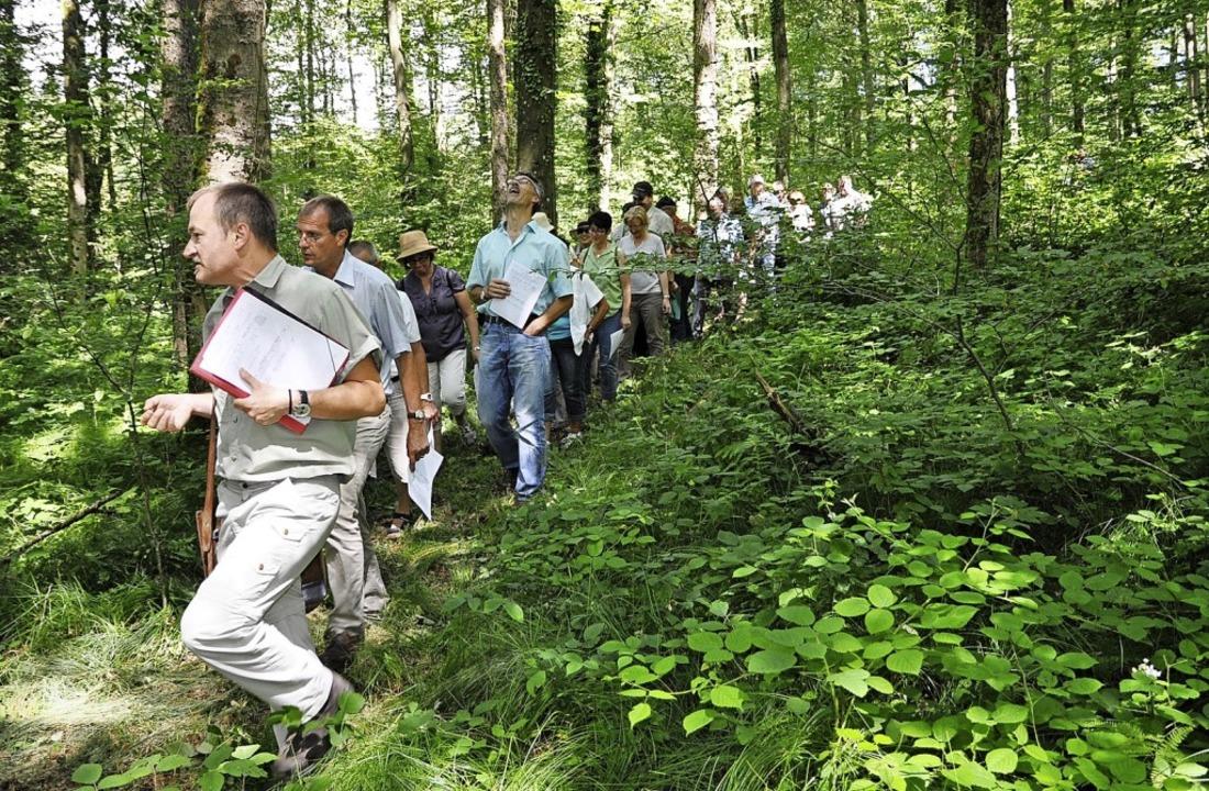 Bernhard Schirmer als Leiter des Forst...r Klimawandel hohe Schäden verursacht.    Foto: zvg