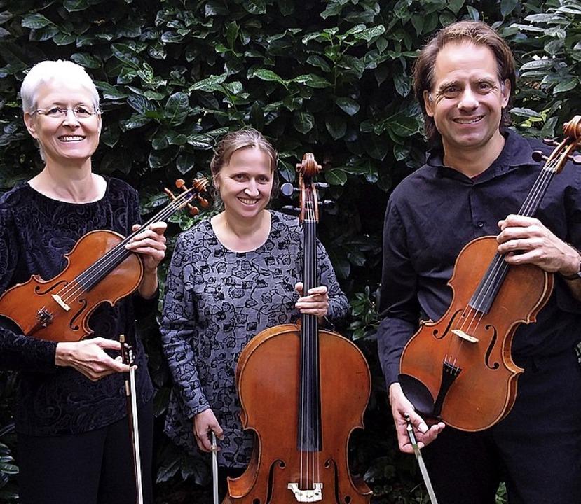 Sie spielen eine Streicherbearbeitung ...seder-Ewald und Sebastian Wohlfahrt.    | Foto: privat