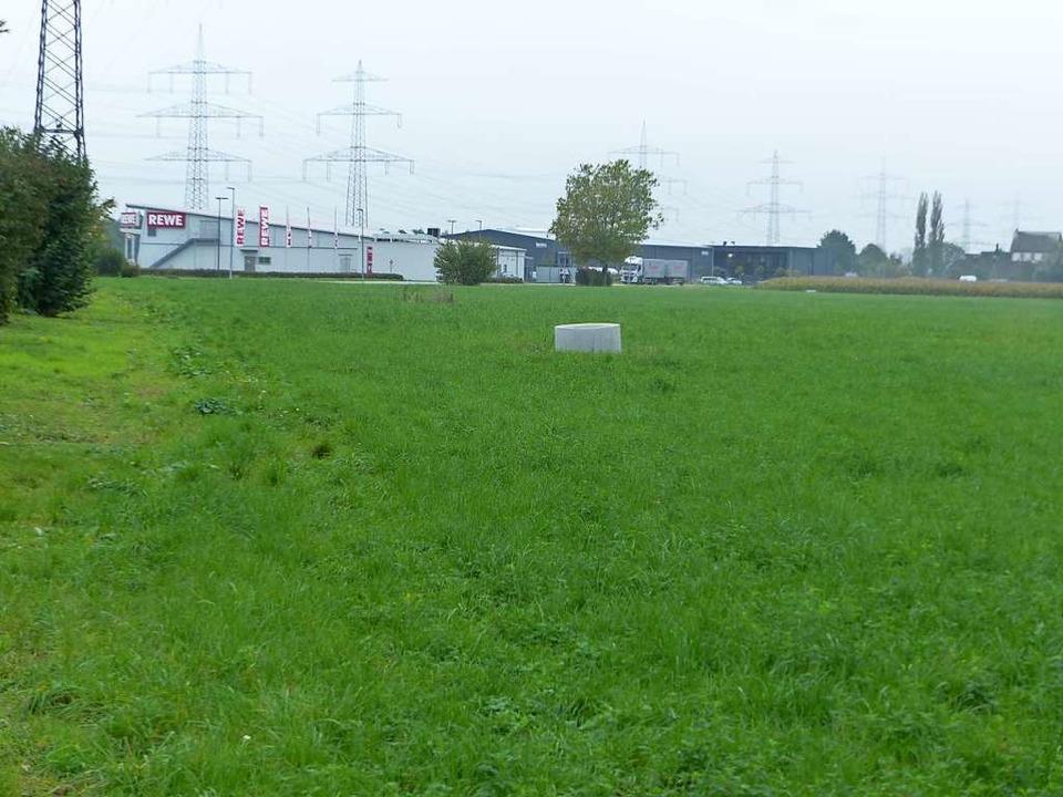 Wo jetzt Gras wächst und früher die Go...rztehaus, soziales Wohnen und Gewerbe.  | Foto: Claudia Bachmann-Goronzy