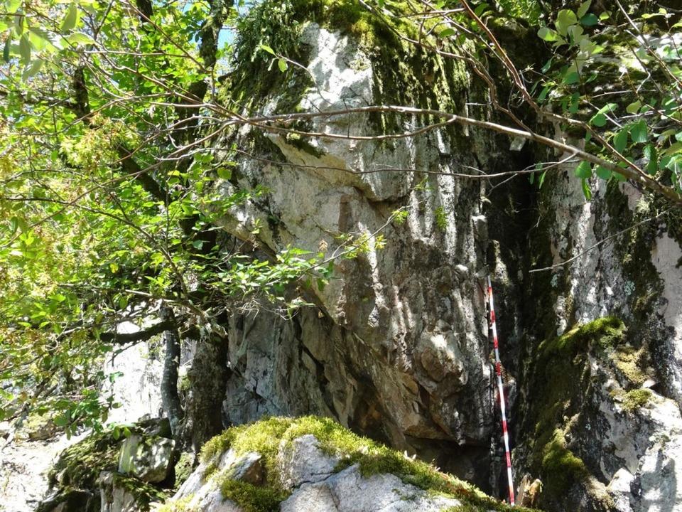 Die Problem-Felsen bei Todnau-Geschwend.    Foto: Stadt Todtnau