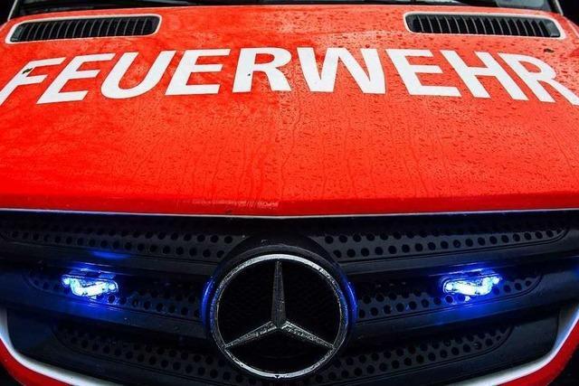 In der Nacht zum Samstag haben wieder Fahrzeuge in Freiburg gebrannt