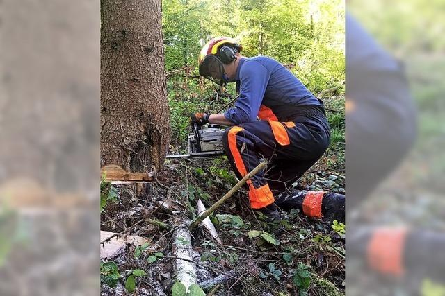 Bürgermeister arbeitet im Wald