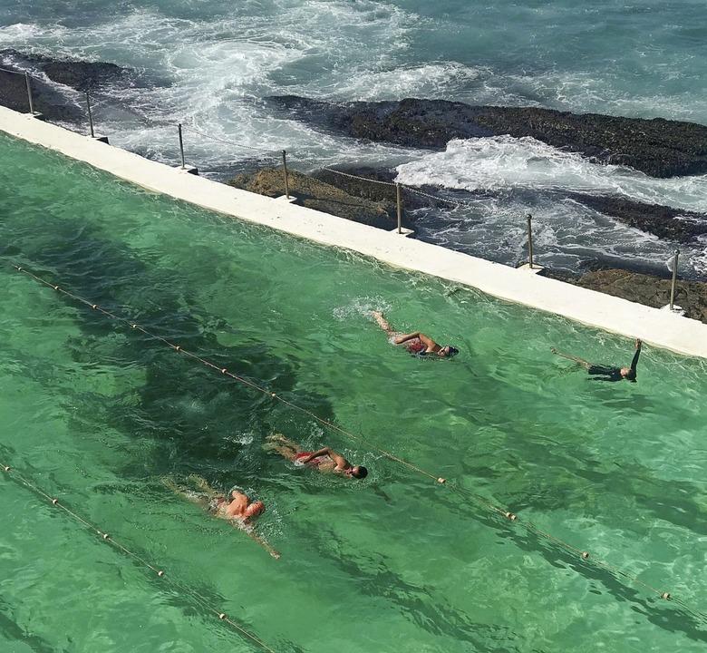 Meistens Hai-frei und mit Meerblick: Ocean Pool in Australien  | Foto: Christoph Sator (dpa)