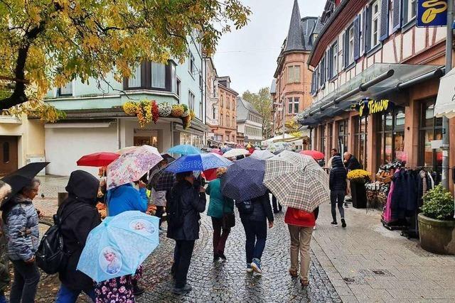 Regen hält Besucher nicht vom Besuch der Chrysanthema in Lahr ab