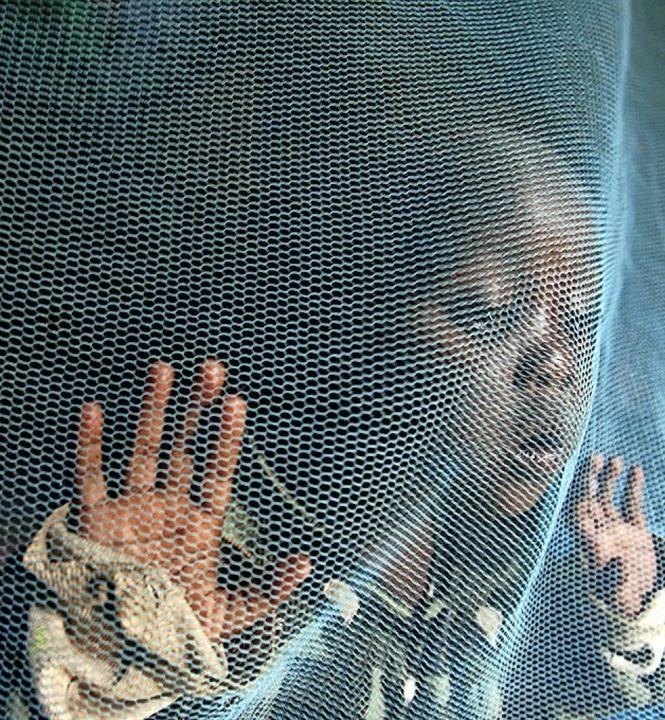 Kind unter einem Moskitonetz  | Foto: epa Morrison
