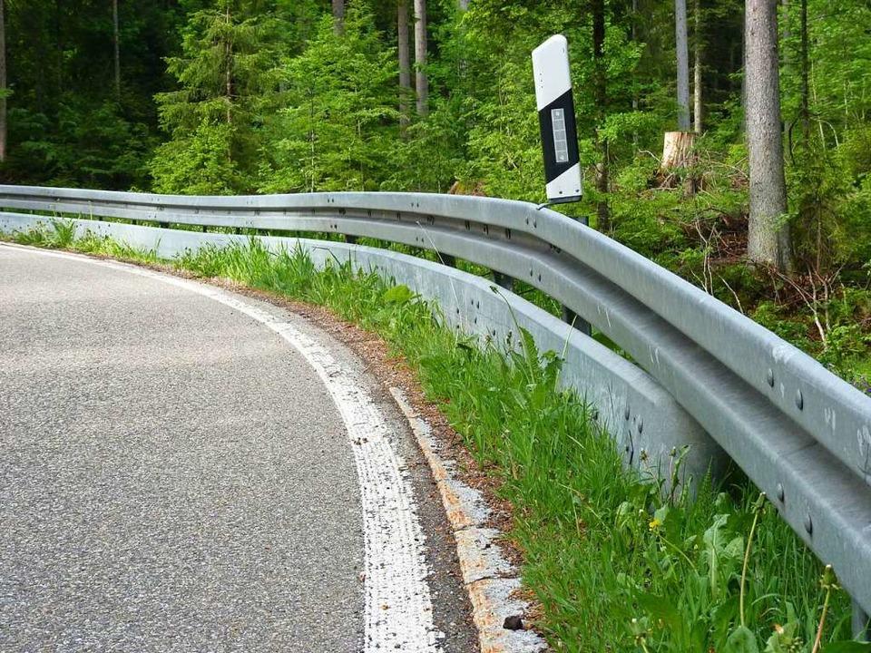 Ein Unterfahrschutz wie hier am Schauinsland kann Leben retten.  | Foto: Sattelberger