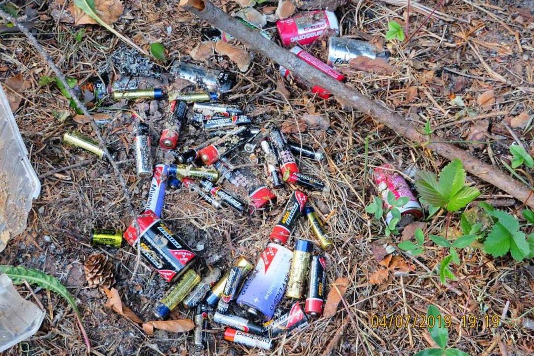 Müll in der Natur (Symbolbild)  | Foto: Privat