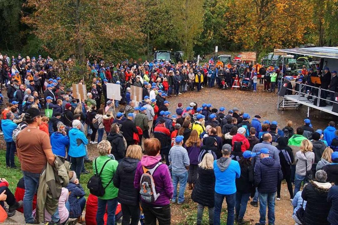Mehr als 1000 Menschen protestierten a...anten ökologischen Flutungen am Rhein.  | Foto: Ilona Huege