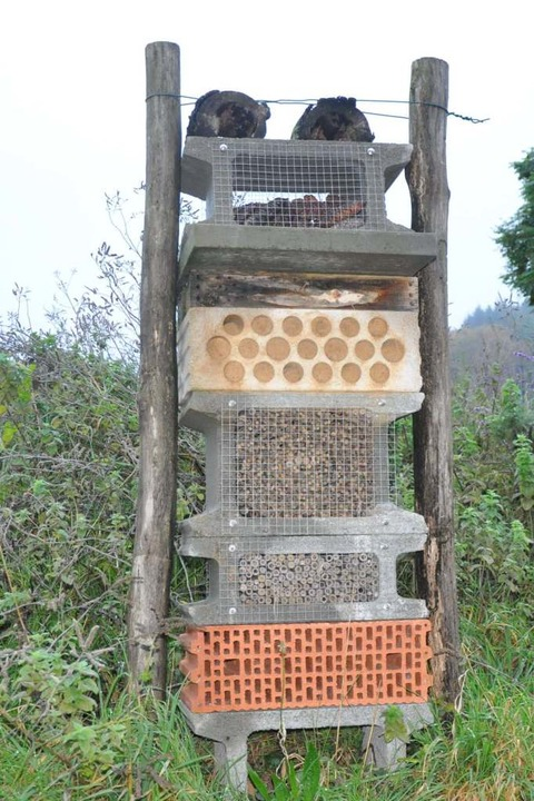 Bloß die Nützlinge nicht vergessen: ei...enzwicker und ein Hotel für Wildbienen  | Foto: Klaus Riexinger