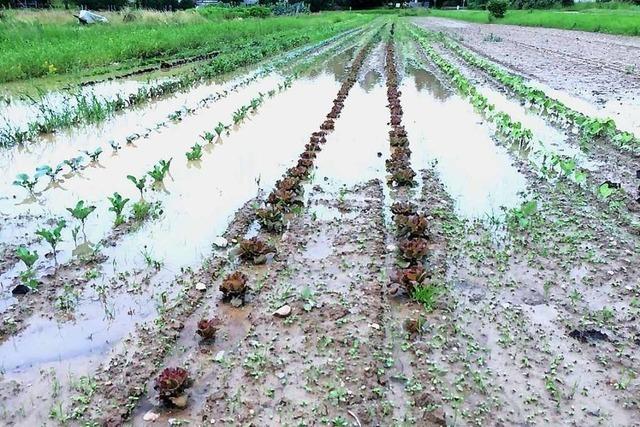 Die Strategien gegen Starkregenschäden im Kreis Lörrach werden konkret