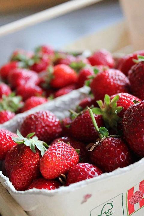 Erdbeeren aus eigenem Anbau    Foto: Annika Sindlinger