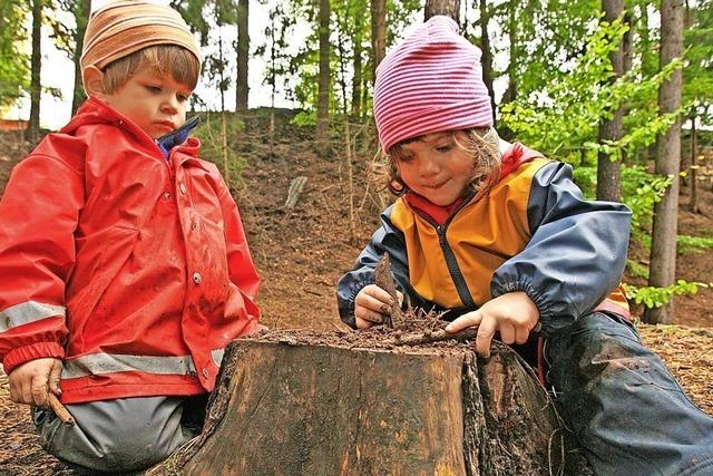 Waldkindergarten soll Maulburg helfen