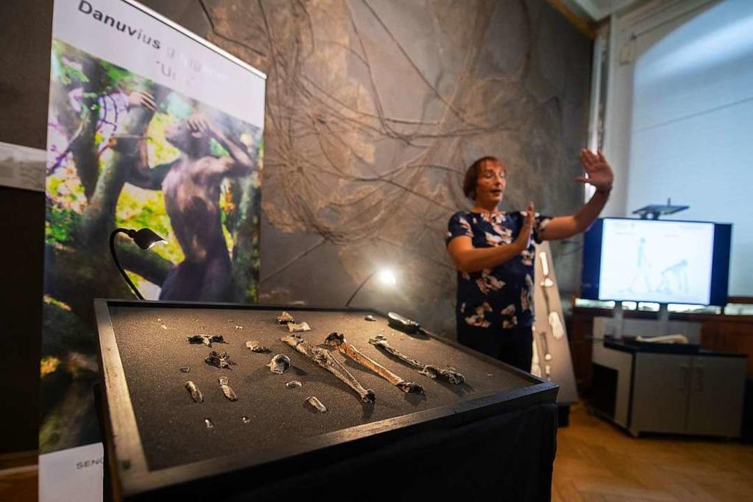 Madelaine Böhme erklärt die Bedeutung der Knochenfunde aus dem Allgäu.  | Foto: Sebastian Gollnow (dpa)
