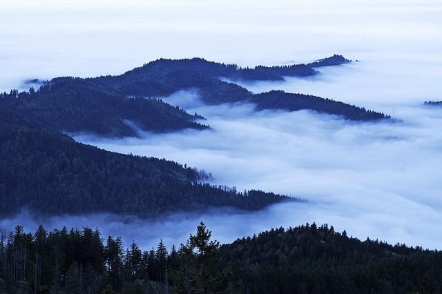 Im Nebelmeer versunken