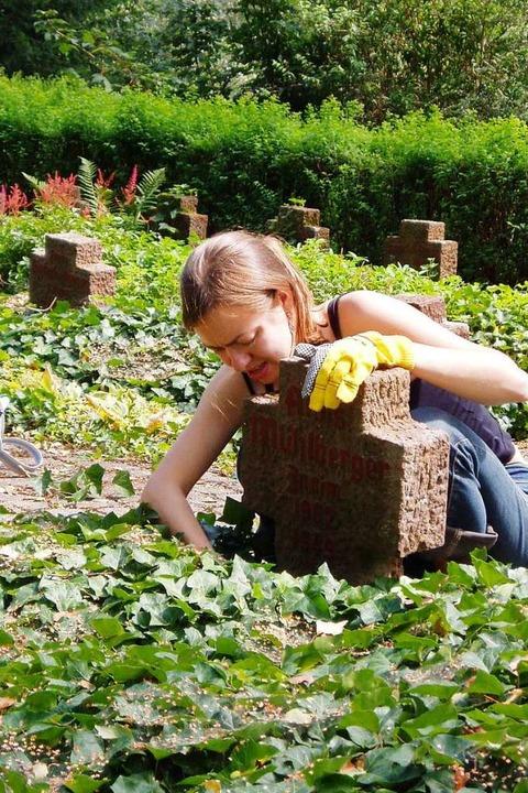 Die Teilnehmerin eines internationalen... Kriegsgräberfürsorge pflegt ein Grab.  | Foto: Volksbund