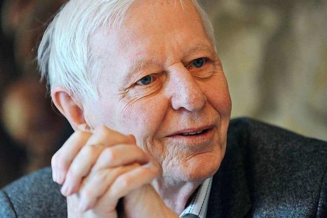 Hans-Magnus Enzensberger wird 90