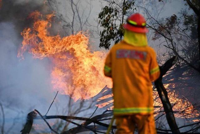 Buschfeuer bedrohen Großraum Sydney