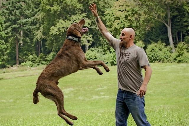 Hundeschule und Comedy mit Holger Schüler