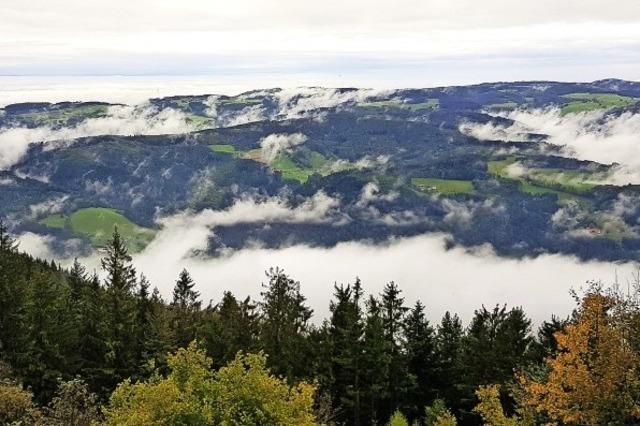 Nebelfelder über dem Schwarzwald